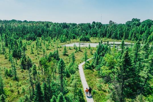 Five Hikes in London, Ontario to keep you active this Fall!