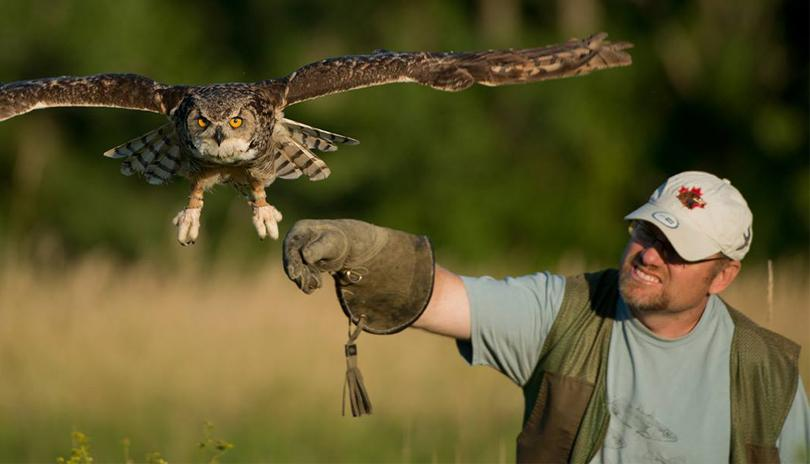 Canadian Raptor Conservancy