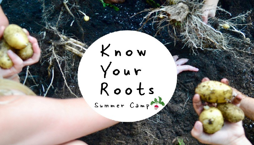 Know Your Roots Summer Camp