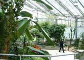 City of London Greenhouse and Civic Garden Complex