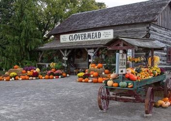 Clovermead Adventure Farm