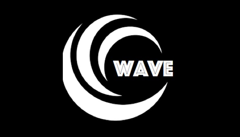 WAVE Limo & Tours