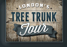 Tree Trunk Tour