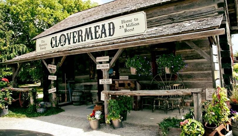 clovermead storefront