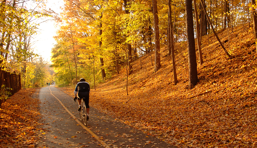 Outdoor Places in London to Enjoy the Fall Scenery