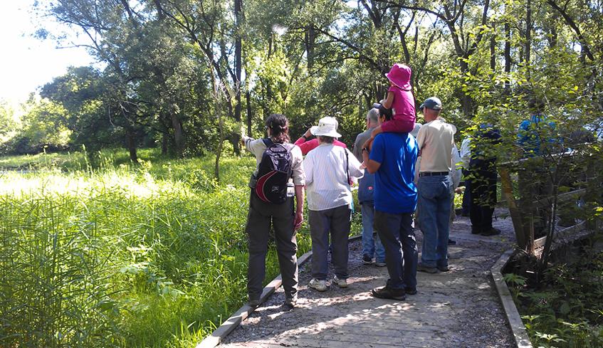 People on walking trail in Kilally Meadows