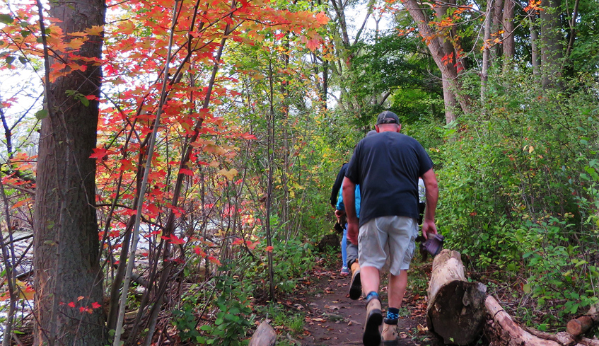 hikers on walking trail in Westminster Ponds/Pond Mills